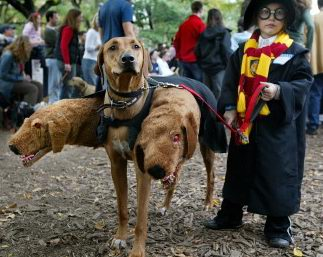 Best Harry Potter Costume
